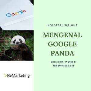 Mengenal apa itu Google Panda