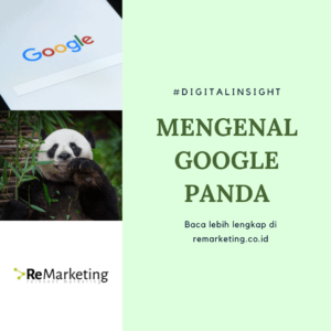 Apa itu google Panda